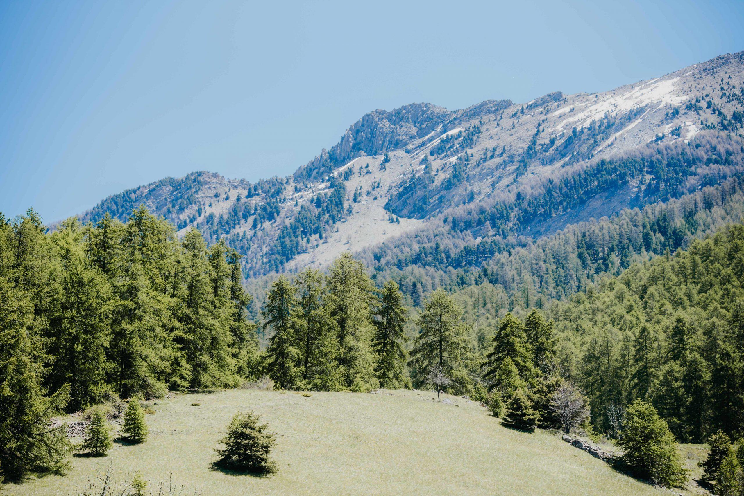vue montagnes des Orres